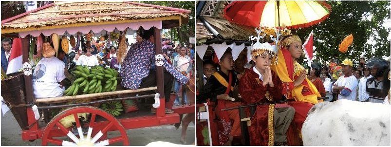 Parade Gerobak Sapi Festival Teluk Jailolo