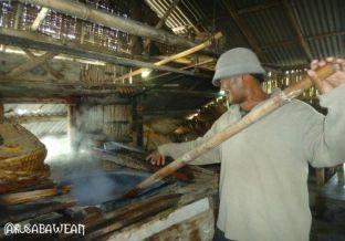 Pengawetan ikan teri dengan direbus
