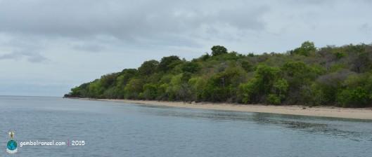 Garis pantai Pulau Moyo
